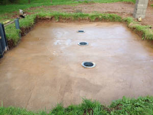 New Pond Build
